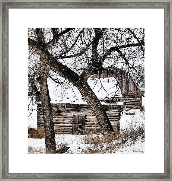 Old Ulm Barn Framed Print