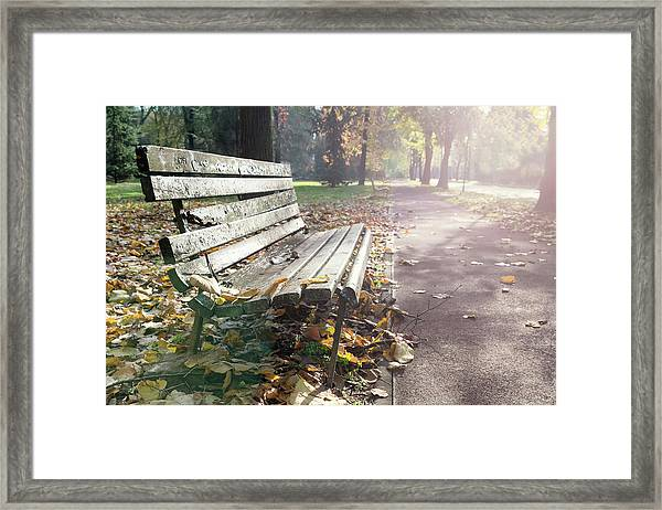 Rustic Wooden Bench During Late Autumn Season On Bright Day Framed Print