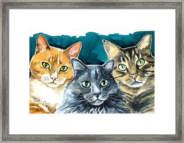 Oliver, Willow And Walter - Cat Painting Framed Print