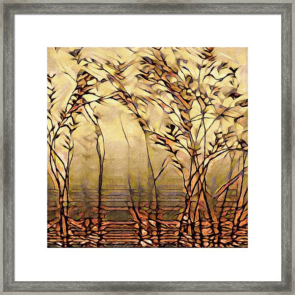 On An Untrodden Path Framed Print