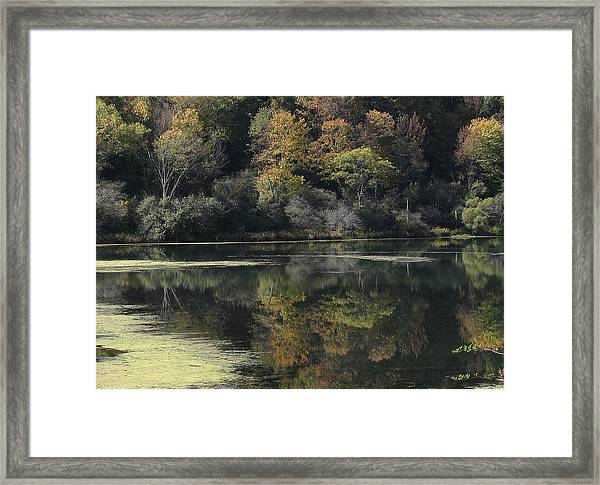 On Lethe's Bank Framed Print