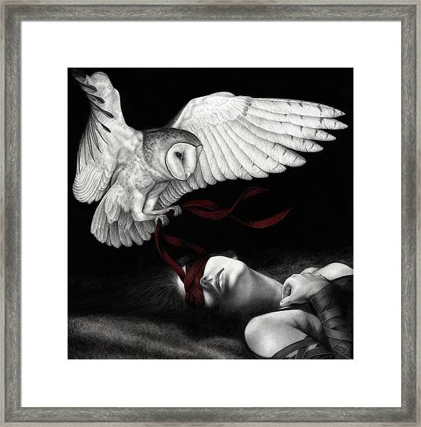 On Silent Wings Framed Print
