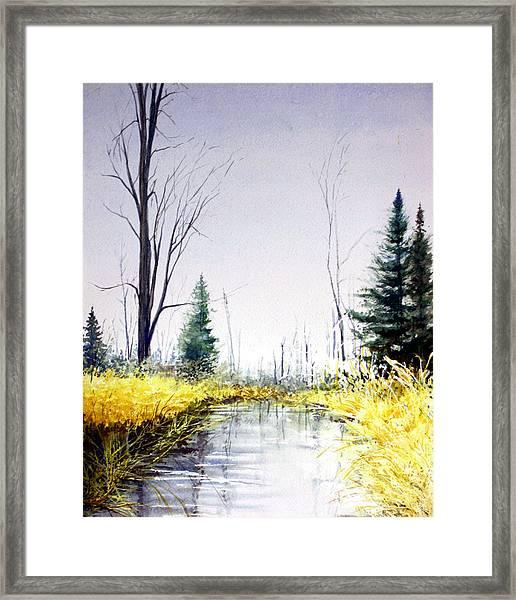 On Silver Pond Framed Print