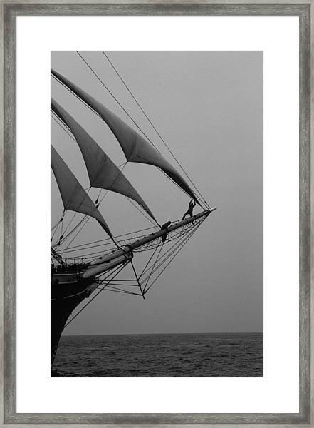 On The Bow Framed Print