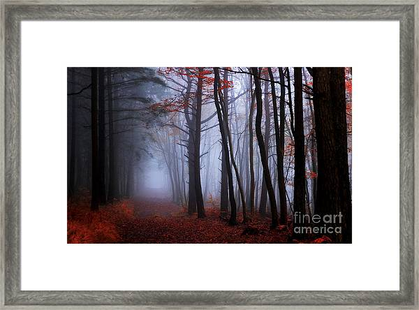 On The Footprints Of Merlin The Wizard Framed Print