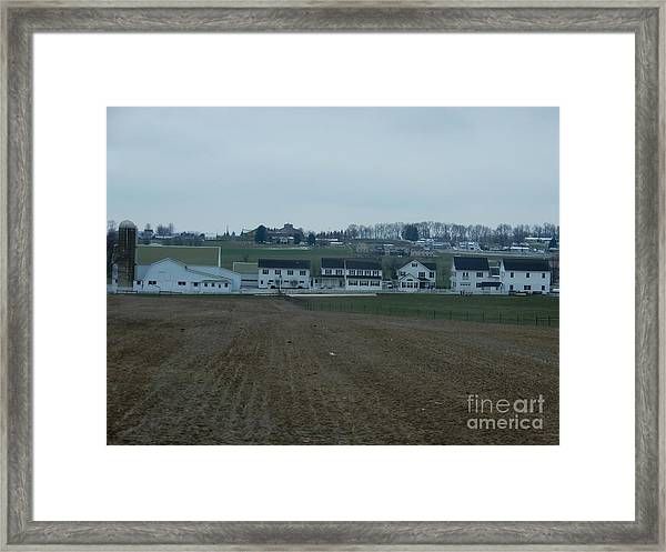 On The Homestead Framed Print