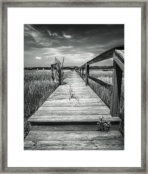 On The Island Framed Print