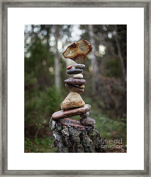 On The Stump Framed Print