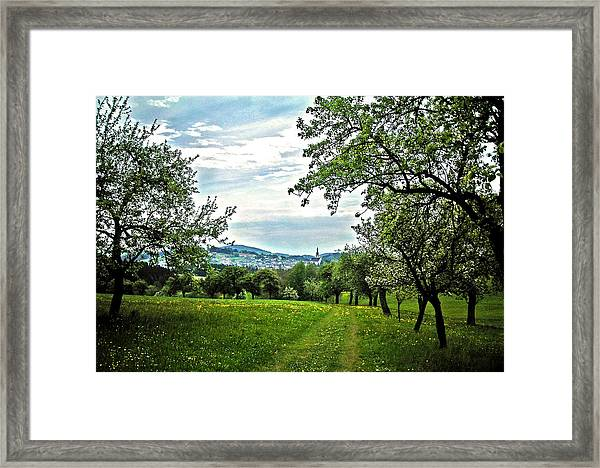 On The Way To Gramastetten ... Framed Print