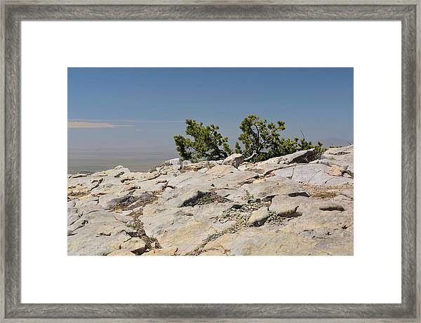 On Top Of Sandia Mountain Framed Print