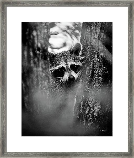 On Watch - Bw Framed Print