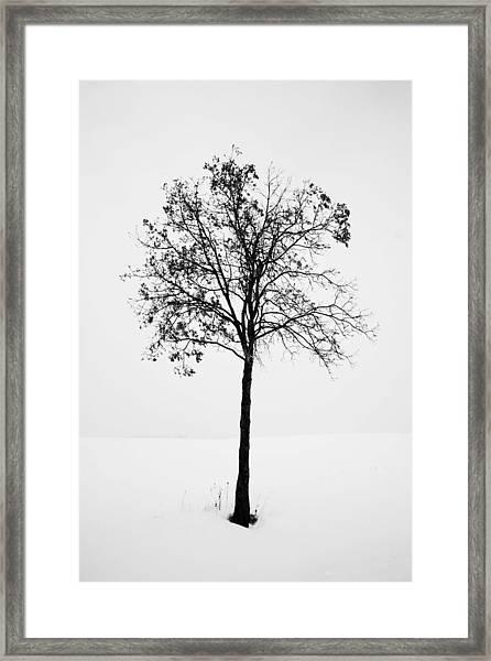 One Framed Print