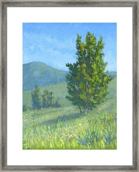 One Fine Spring Day Framed Print