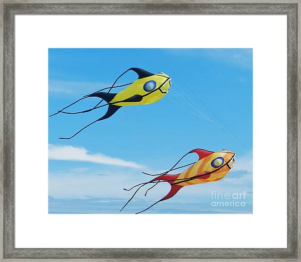 One Fish, Two Fish Framed Print
