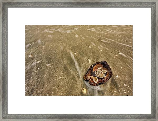 One Flew Over The Coockoo's Nest Framed Print