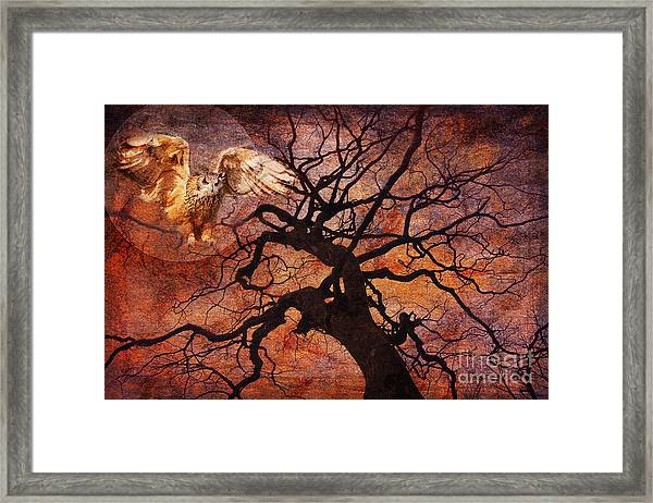 One Of These Nights 2015 Framed Print
