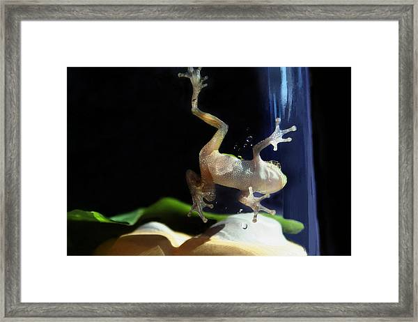 One Step At The Time Framed Print