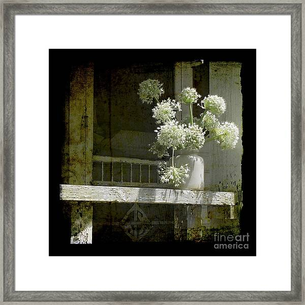 Onion Blooms Framed Print