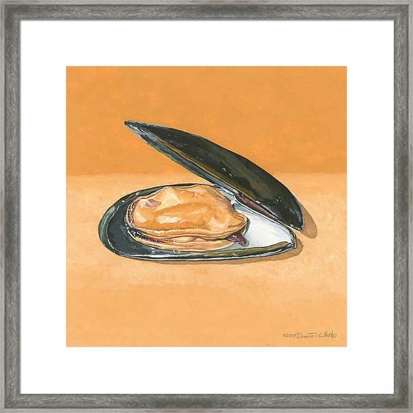 Open Mussel Framed Print
