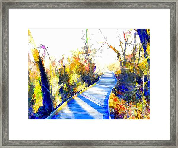 Open Pathway Meditative Space Framed Print