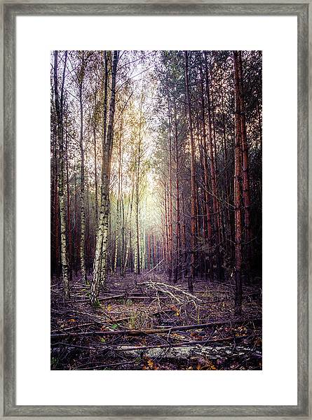 Opposition Framed Print