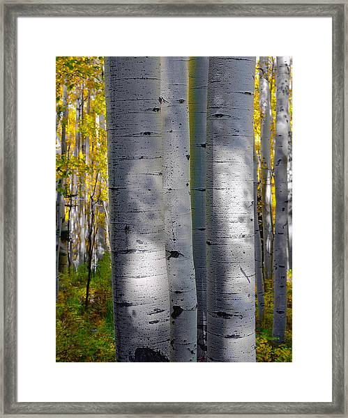 Optically Connected Framed Print