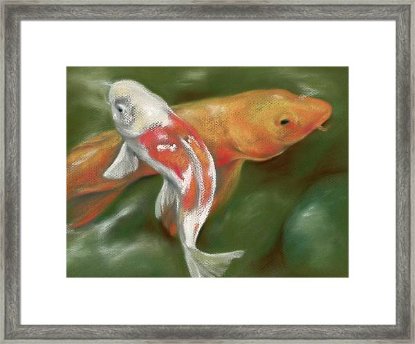 Orange And White Koi With Mossy Stones Framed Print
