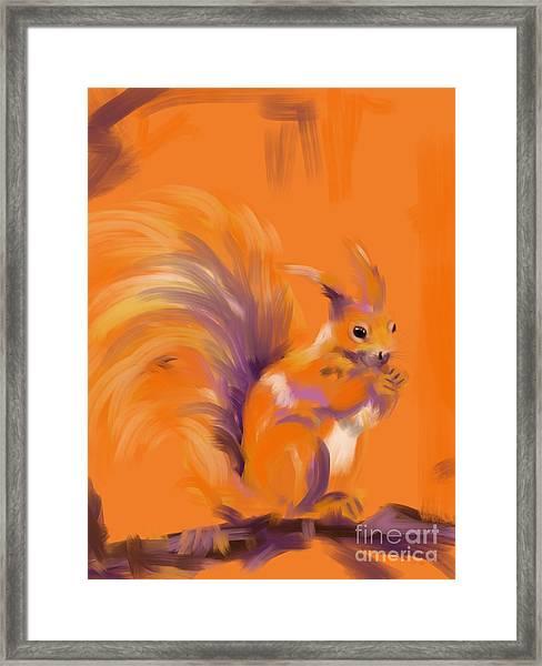 Orange Forest Squirrel Framed Print
