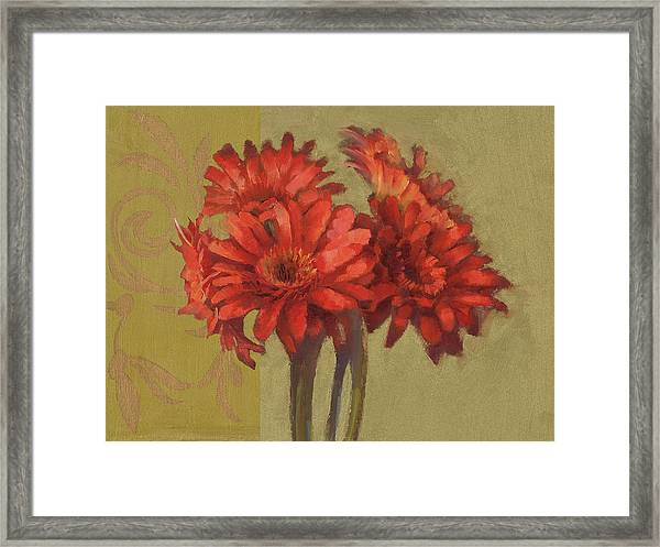 Orange Gerbers Framed Print by Cathy Locke
