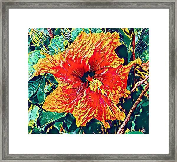 Orange Hibiscus In Crepe - Full View Framed Print