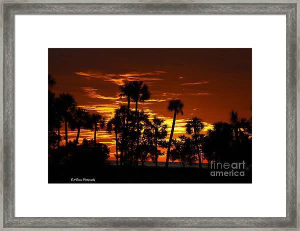 Orange Skies Framed Print