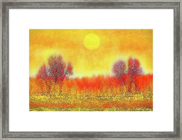 Orange Sunset Shimmer - Field In Boulder County Colorado Framed Print