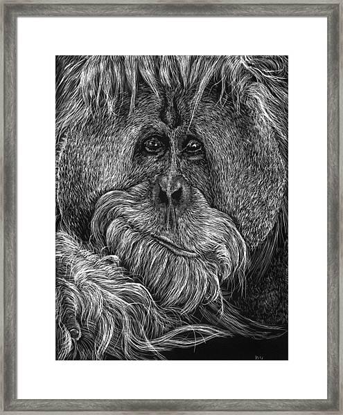 Orangitan Framed Print