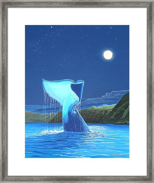 Orca Fluke Framed Print by Jeffrey Oldham