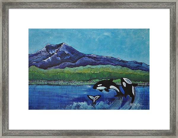 Framed Print featuring the painting Orcas In Puget Sound by Laurie Maves ART