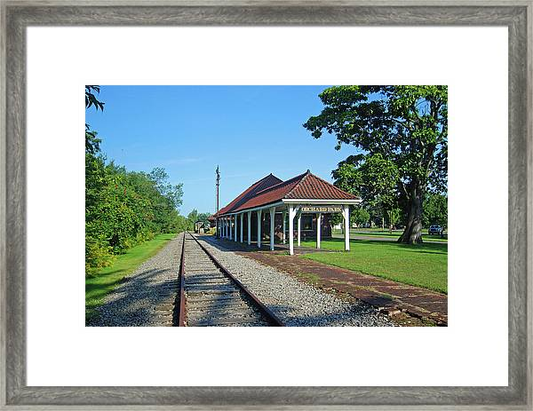 Orchard Park 1004 Framed Print
