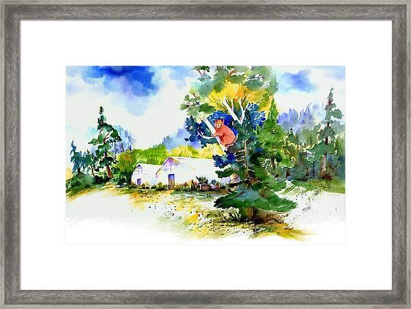 Orchard Springs Bear Framed Print