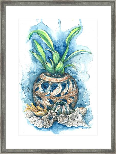 Orchid And Barnacle Framed Print