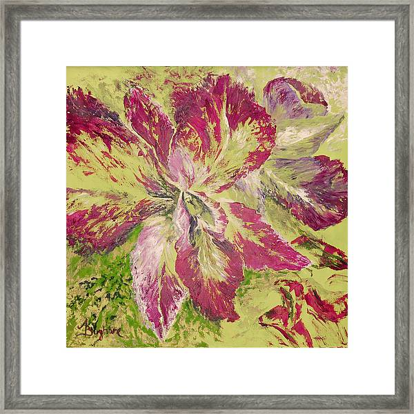 Orchid Framed Print by Aneta  Berghane