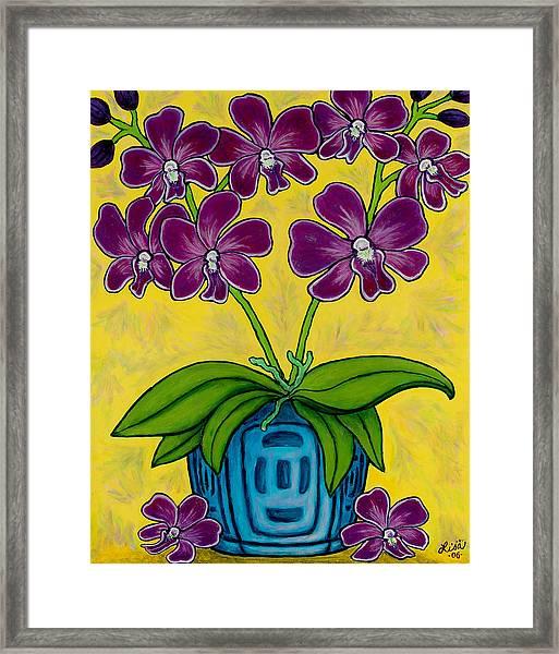 Orchid Delight Framed Print