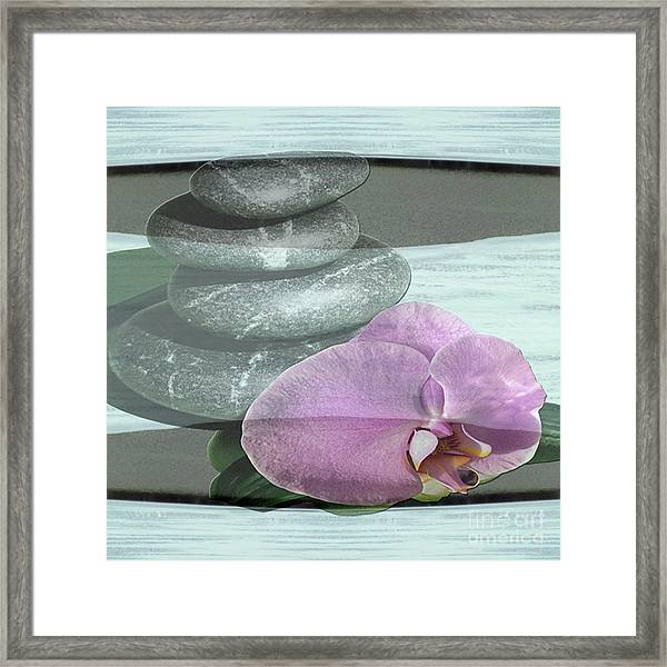Orchid Tranquility Framed Print