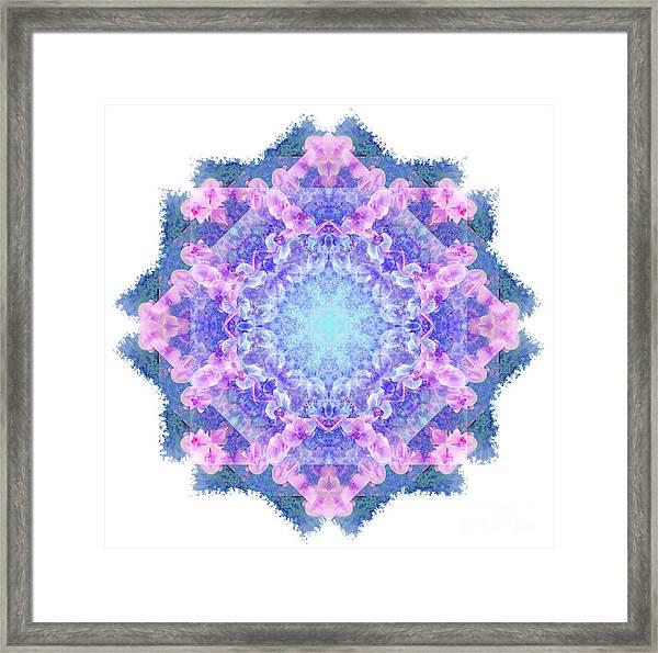 Orchids Mandala Framed Print