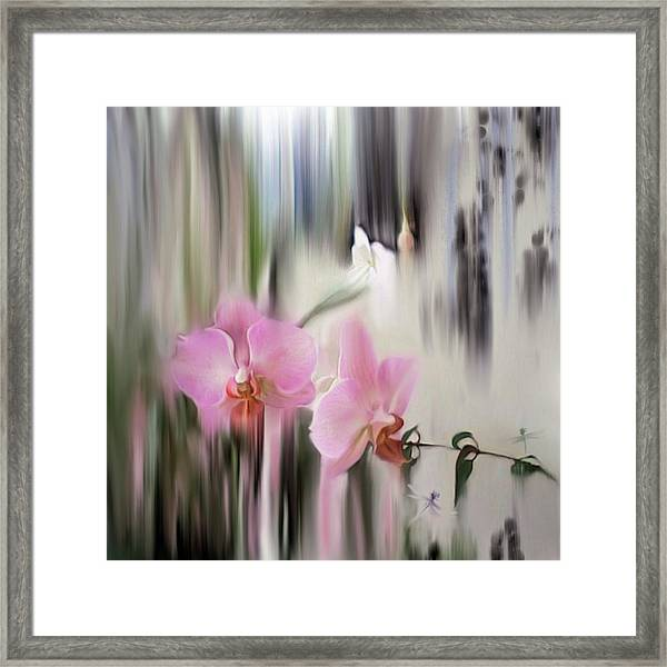 Orchids With Dragonflies Framed Print