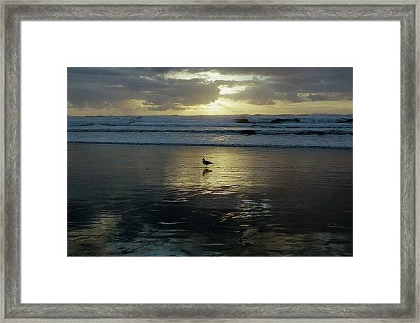 Oregon Coast 3 Framed Print