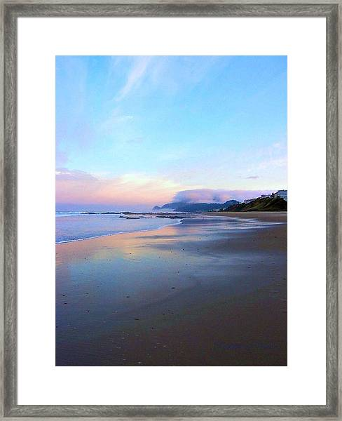 Oregon Coast 4 Framed Print