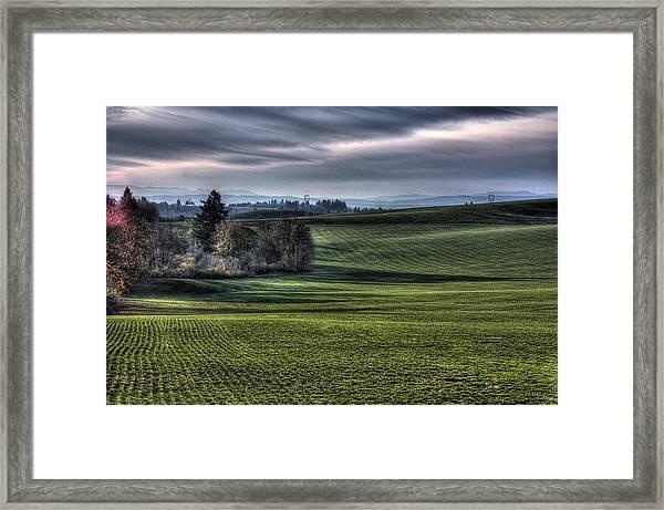 Oregon Field Framed Print