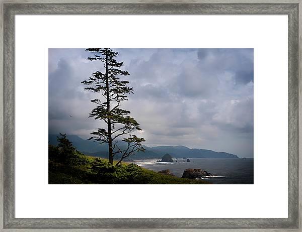 Oregon Ocean Vista Framed Print