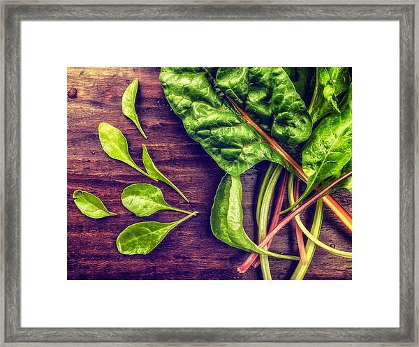 Organic Rainbow Chard Framed Print