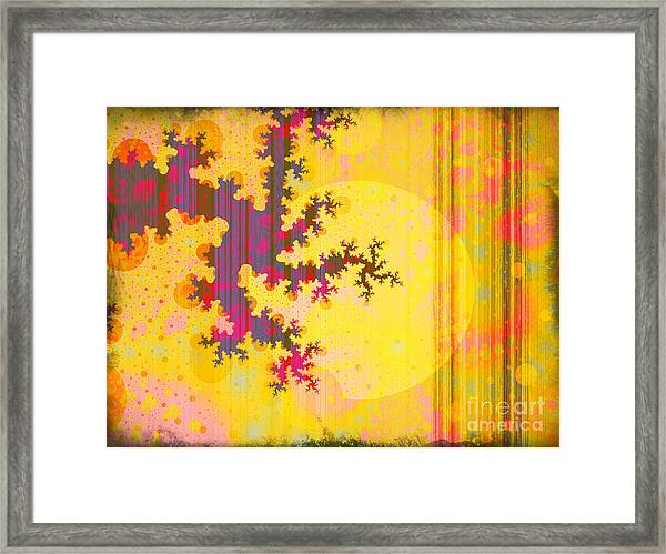 Oriental Moon Behind My Courtain Framed Print