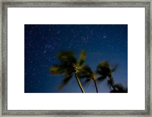 Orion And Windswept Palms Framed Print